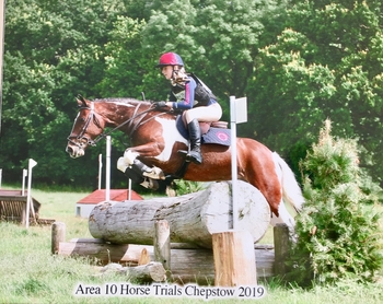 Superstar competition pony of a lifetime