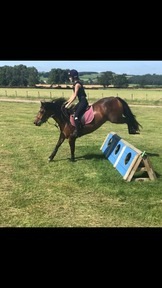 14.1hh PC/mother-daughter share