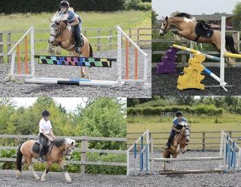 Fun 12.2 project pony!
