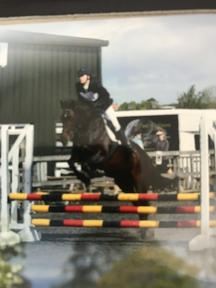 Huge showjumping potential! Cruising and Lux Z Mare