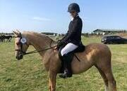 Mare in a million. Perfect second pony.  Palomino 13.1hh Section B