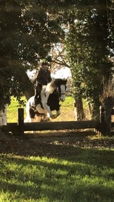 Lovely riding club prospect