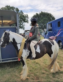 Perfect first Pony