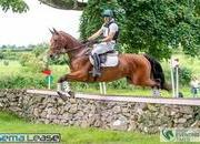 4* Qualified Superb 17.1hh Eventer