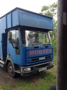 For Sale R Reg 7.5 Iveco Horsebox