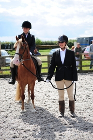 Flashy 13.2hh Chestnut Welsh Section C Mare WPCS Show Pony