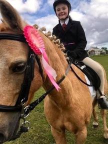 12.3hh palomino lead rein pony
