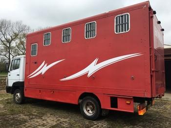 Mercedes 814D Horsebox