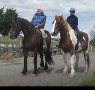 15.2. Bombproof weight carrying mare