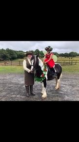 Princess Belle Pony