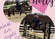Holly – stunning mare!