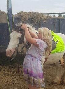 Brilliant hacking pony