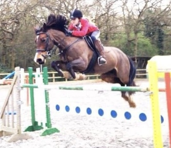 14.1 FUN PONY CLUB/ALLROUNDER