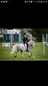 Beautiful fun 2nd pony