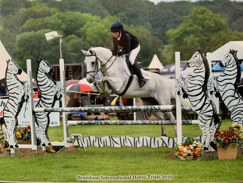 Connemara – Flea Bitten Grey – Gelding – 10 years – full up 14.2hh British Eventing/ Working Hunter Pony/ Pony Club