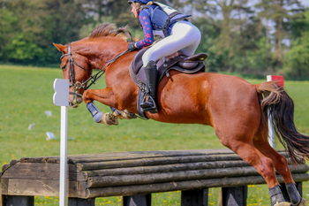 148 Competition Pony