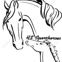 HVS Sporthorses